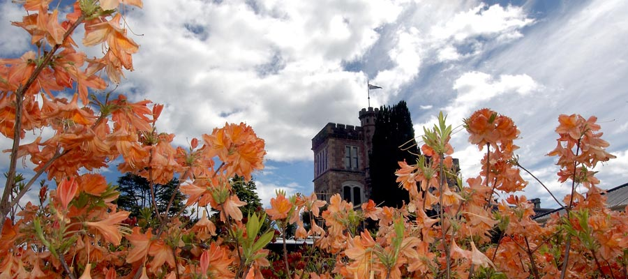 Spring at Larnach Castle