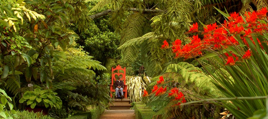 Rainforest Throne at Larnach Castle