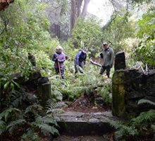 Dig reveals secrets of castle's fernery, Larnach Castle