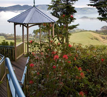 Explore Larnach Castle and Gardens