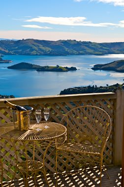 View from a balcony at Larnach Lodge
